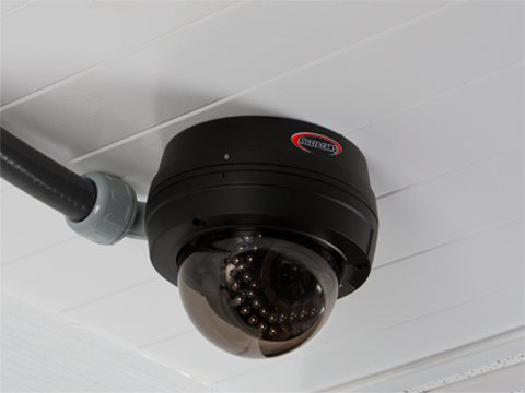sentry flex conduit - Sentry 700 Dome Camera