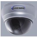 neptune - Fresh Water Analog Cameras